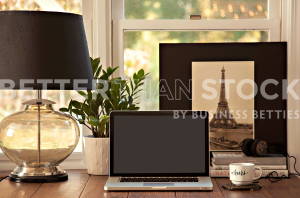 Better Than Stock by Business Betties In the Mood Styled Desktop Collection